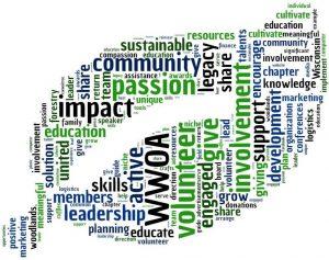 wordcloud_volunteer_crop