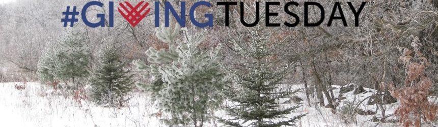 Celebrate Giving Tuesday with WWOA!