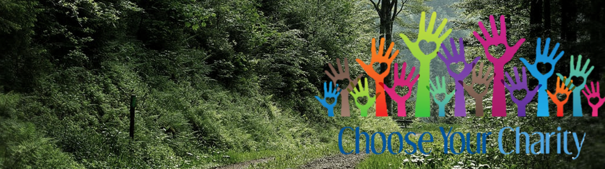 Choose Your Charity Campaign